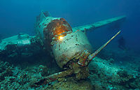 Asia, Republic of Palau, Islandstate, Jake Seaplane, Jake japanese Zerofighter, Short Drop Off, airplane, aircraft, plane, aeroplane, diver behind the wreck, shining wreck, light at the wreck, seaground, pacific ocean,  WW II, Aichi E13A-1 Japanese Navy S