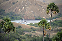 Asia, Indonesia, Komodo, Rinca Island, sailboat, boat in a calm, tranquil, quiet lagoon, palmtrees
