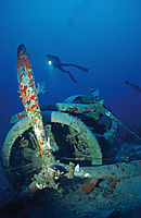Asia, Turkey, Kas, diver behind a airplane wreck, wrack, aircraft, Marchetti SM 79 I Sparviero, three engines, motors