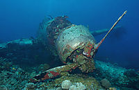 Airplanewreck, Airplane, wreck, wrack, Jake Seaplane Divesite, japanese Worldwar II aircraft wrack