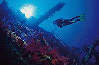 Africa, Egypt, Red Sea, diver in backlight at the shipwreck of the Numibia, Brother Islands, Big Brother, Marine Park