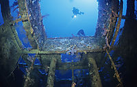 Africa, egypt, red sea, diver above the shipwreck of the Aida II, red sea, Brother Islands, north point Big Brother, Egypt, wreck,  wreck diving, Aida II