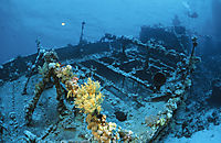 Africa, South Egypt, Hamata, red Sea, shipwreck of the Tienstin at Abu Galawa Kibeer, Fury Shoals, wreck of the M.S. Tienstin