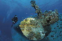 Africa, Egypt, Red Sea, Safaga, diver at the propeller of the shipwreck Salem Express, wreck of a ferryboat