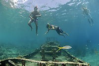 America, Curacao, Netherlands Antilles, All West Curacao, Tugboat, snorkeling on a wreck, shipwreck in shallow water, freediver
