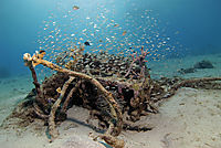 America, Curacao, Netherlands Antilles, All West Curacao, parts of a wreck in the sand ground