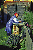 Europe, Slovenia, Alps, smiling grandma, glad gran, smilingly granny, old women in a garden, Studor, Bohinjsko Jezero