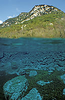 Europe, Italy, Friuli, freshwater, fresh water, coldwater, Riserva Naturale Lago di Cornino, Forgaria, algea, algas, splitimages, split images