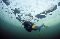 Europe, Germany, Bavaria, ice diving, icediving, ice diver, diving under ice, freshwater, fresh water, coldwater