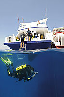 Africa, Egypt, Red Sea, Open Water Rebreather Course, Orca Dive Center Safaga, dive down, splitimage, splitshoot