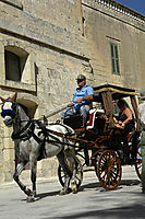 Europe, Malta, Gozo, Mediterranean Sea, ally commonwealth, Mdina, Horse-drawn carriage