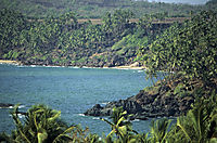 Asia, India, Palmbeach north of Goa
