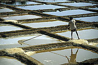 Asia, India, salt mining, basin, basins