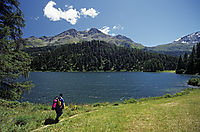 Europe; Switzerland; East Switzerland; Oberengadin; lake Champferer, diver; mountain lake diving, sunny day in the alps