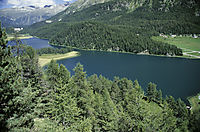 Europe; Switzerland; East Switzerland; Oberengadin; lake Champferer, view to the mountain lake diving, sunny day in the alps