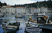 Europe, Slovenia, adriatic sea, mediterranean sea, harbor, harbour of Piran, fishing boats, fisherman