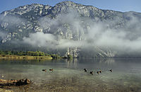 Europe, Slovenia, Alps, karst, julian alps, morning fog, haze at lake Bohinj, mountain idyll